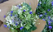 cropped-gs-summer-bouquet-blue-white.jpg